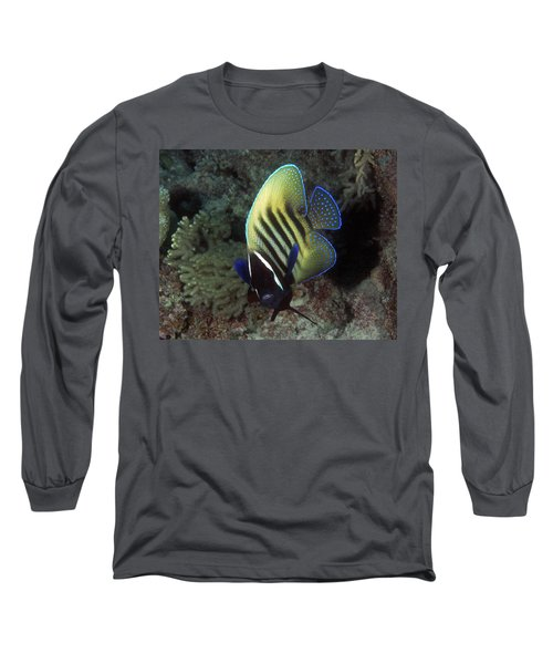 Six Banded Angelfish, Great Barrier Reef Long Sleeve T-Shirt