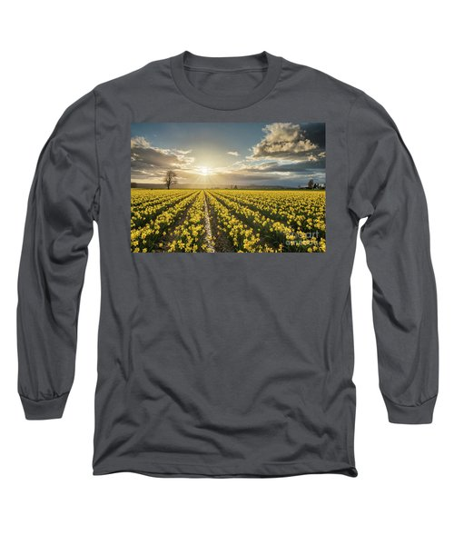 Long Sleeve T-Shirt featuring the photograph Skagit Daffodils Bright Sunstar Dusk by Mike Reid