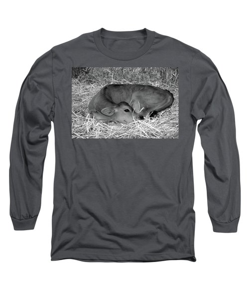 Sleeping Calf Long Sleeve T-Shirt