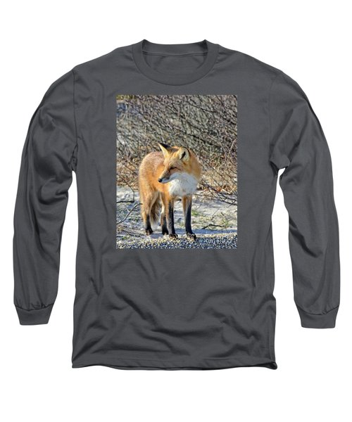 Long Sleeve T-Shirt featuring the photograph Sly Little Fox by Sami Martin