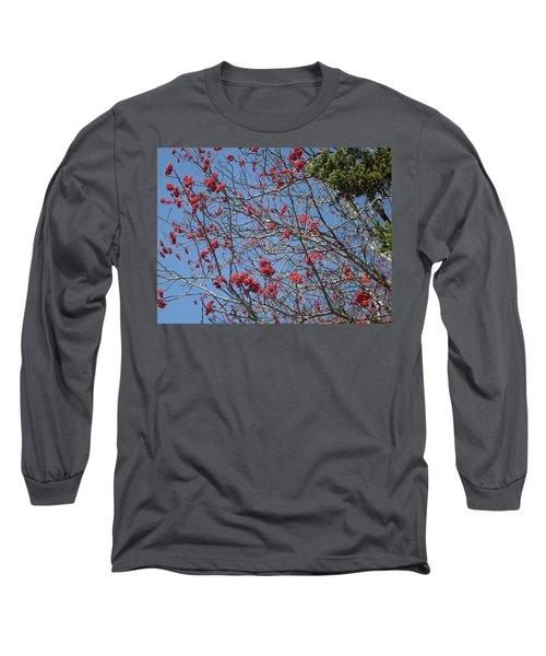 Smokies 8 Long Sleeve T-Shirt by Val Oconnor