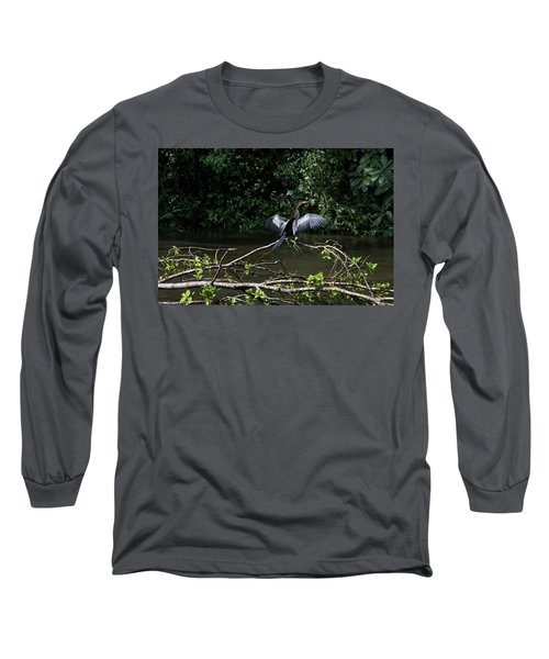 Snake Bird Perching Long Sleeve T-Shirt