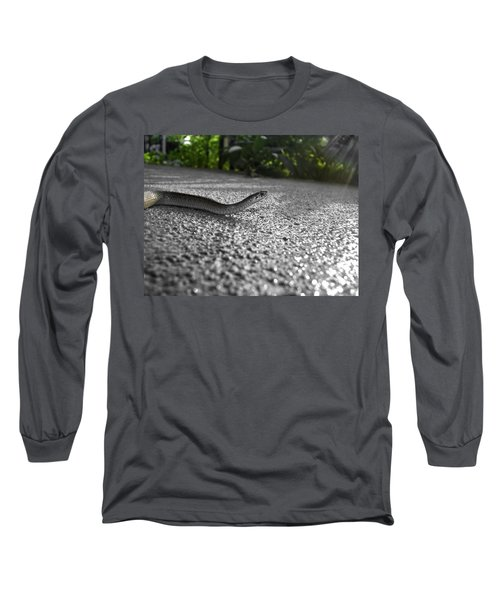 Snake In The Sun Long Sleeve T-Shirt