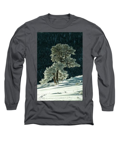 Snow Covered Tree - 9182 Long Sleeve T-Shirt