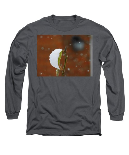 Snowing Long Sleeve T-Shirt by Betty-Anne McDonald