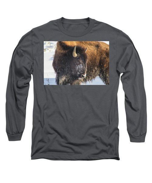 Snowy Bison Long Sleeve T-Shirt