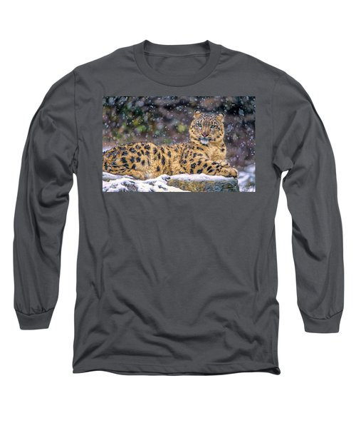 Snowy Day  Long Sleeve T-Shirt