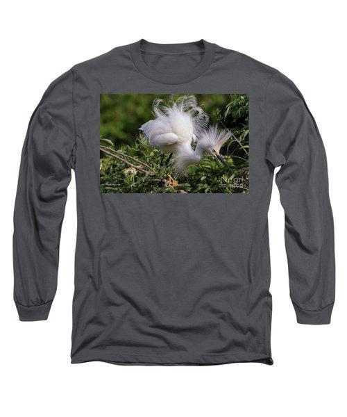 Snowy Decsending Long Sleeve T-Shirt