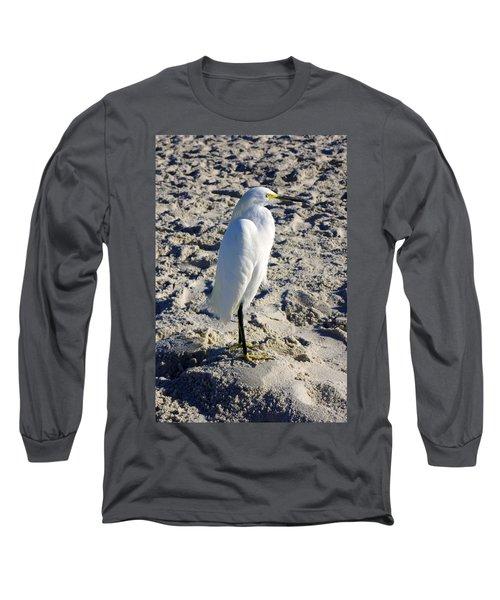 Snowy Egret At Naples, Fl Beach Long Sleeve T-Shirt