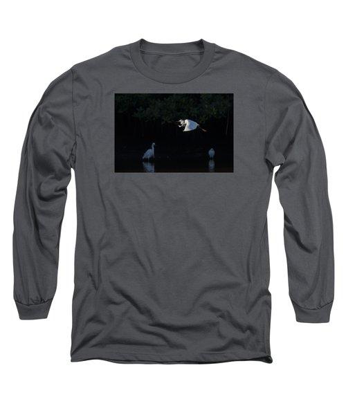 Snowy Egret Gliding In The Morning Light Long Sleeve T-Shirt