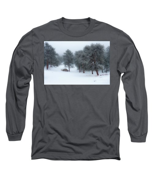 Snowy Morning - 0622 Long Sleeve T-Shirt