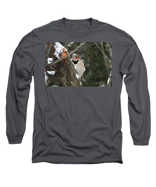 Snowy Northern Flicker Long Sleeve T-Shirt by Trina Ansel