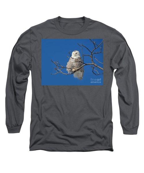 Snowy Owl 7 Long Sleeve T-Shirt