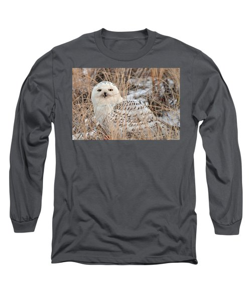 Snowy Owl Long Sleeve T-Shirt by Nancy Landry