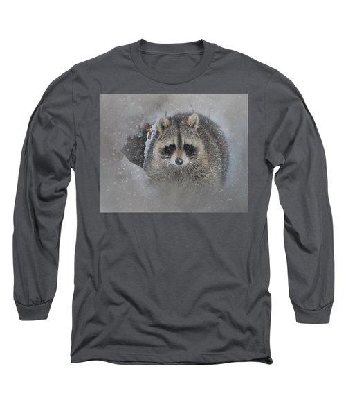 Snowy Raccoon Long Sleeve T-Shirt