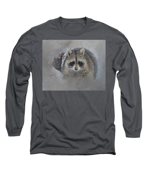 Snowy Raccoon Long Sleeve T-Shirt