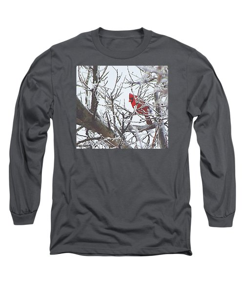 Snowy Red Bird A Cardinal In Winter Long Sleeve T-Shirt