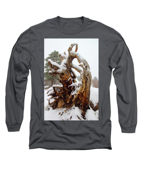 Snowy Roots 2 Long Sleeve T-Shirt