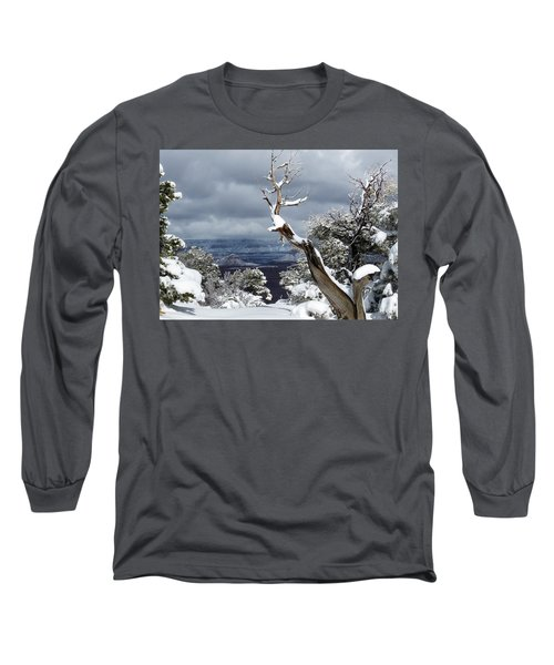 Snowy View Long Sleeve T-Shirt by Laurel Powell
