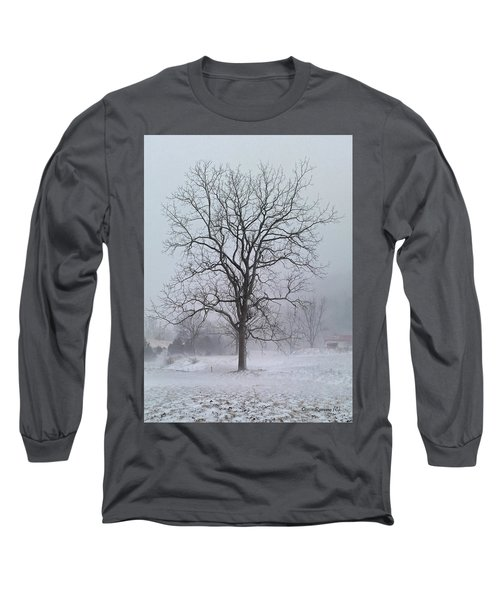 Long Sleeve T-Shirt featuring the photograph Snowy Walnut by Denise Romano