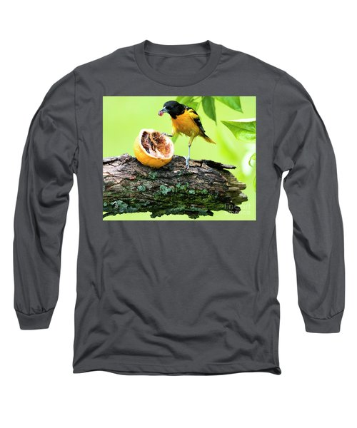 Soaking Wet Baltimore Oriole At The Feeder Long Sleeve T-Shirt