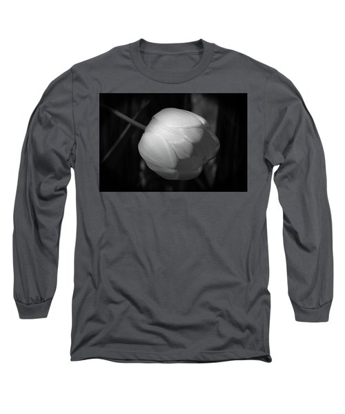 Softly Long Sleeve T-Shirt by Jim Gillen