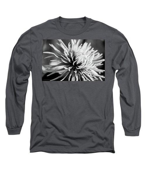 Solitute Long Sleeve T-Shirt