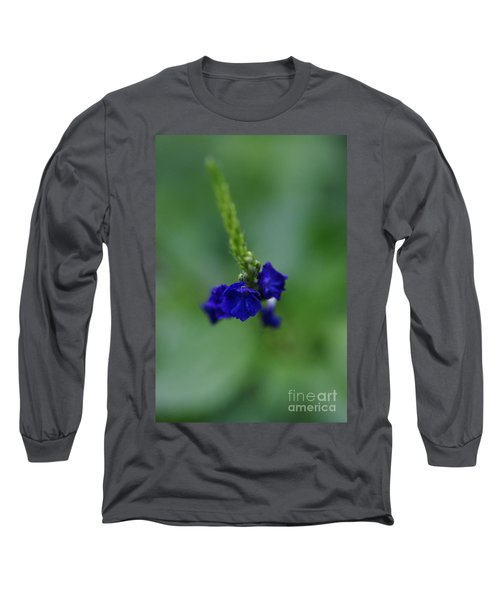 Somewhere In This Dream Long Sleeve T-Shirt by Linda Shafer