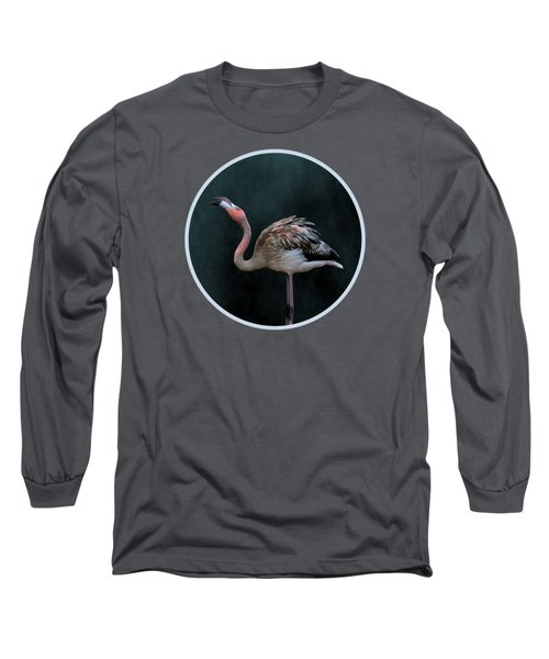 Song Of The Flamingo Long Sleeve T-Shirt