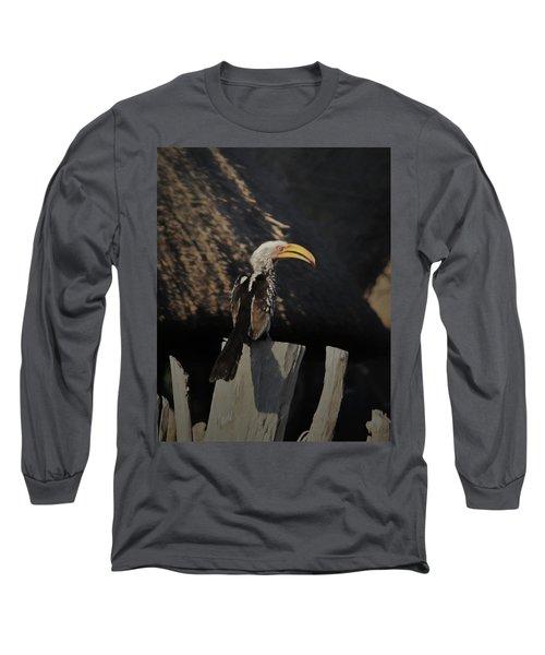 Southern Yellow Billed Hornbill Long Sleeve T-Shirt by Ernie Echols
