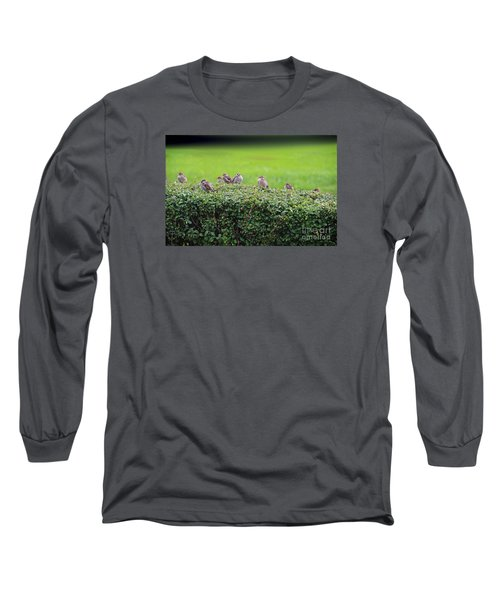 Sparrows Gathering Place  Long Sleeve T-Shirt by Yumi Johnson