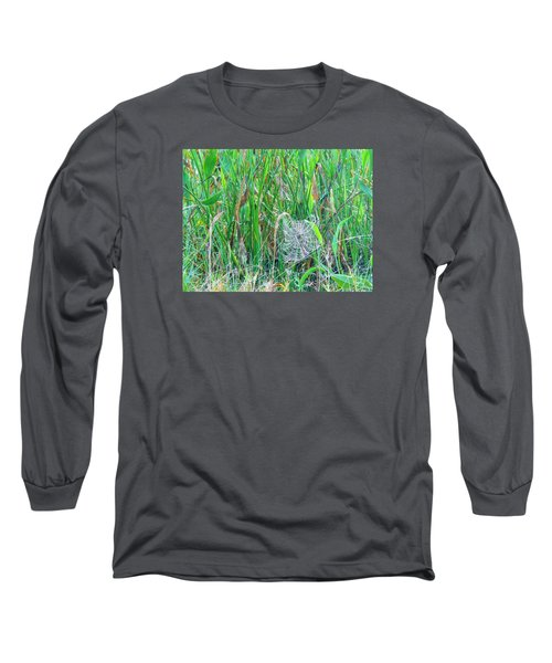 Spider Web Long Sleeve T-Shirt by Kay Gilley