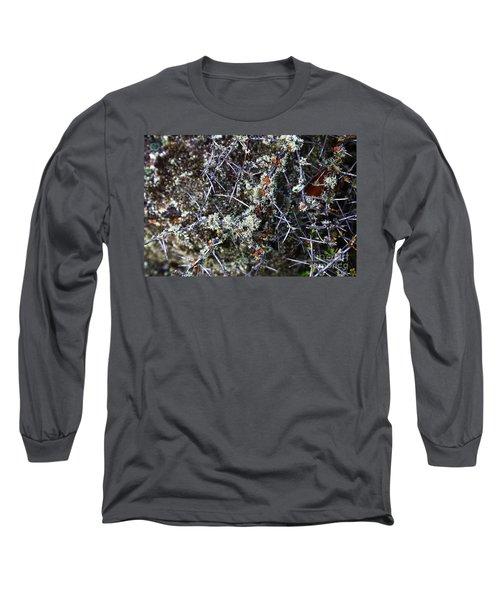Spiky Matagouri And Lichen Long Sleeve T-Shirt