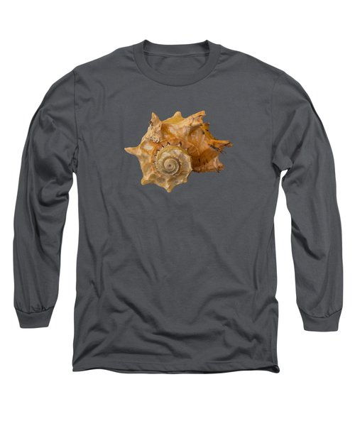 Spiral Shell Transparency Long Sleeve T-Shirt