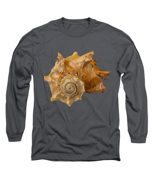 Spiral Shell Transparency Long Sleeve T-Shirt