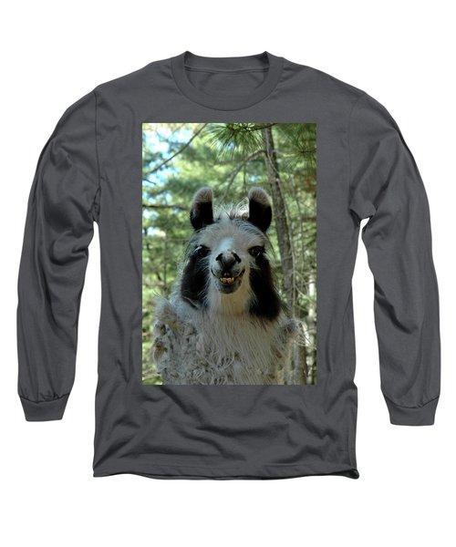 Long Sleeve T-Shirt featuring the photograph Spooky Llama by LeeAnn McLaneGoetz McLaneGoetzStudioLLCcom