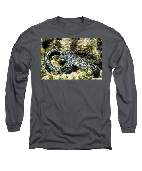 Spotted Moray Eel Long Sleeve T-Shirt by Amy McDaniel