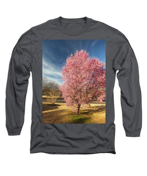 Spring 2017 Long Sleeve T-Shirt