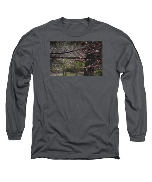 Spring Crabapple Long Sleeve T-Shirt by Morris  McClung