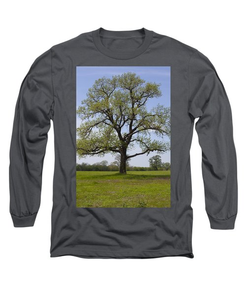 Spring Emerges Long Sleeve T-Shirt