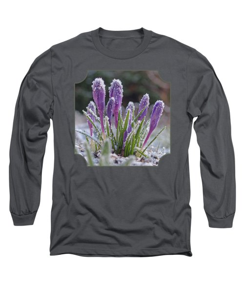 Spring Is Round The Corner -purple Crocus Long Sleeve T-Shirt