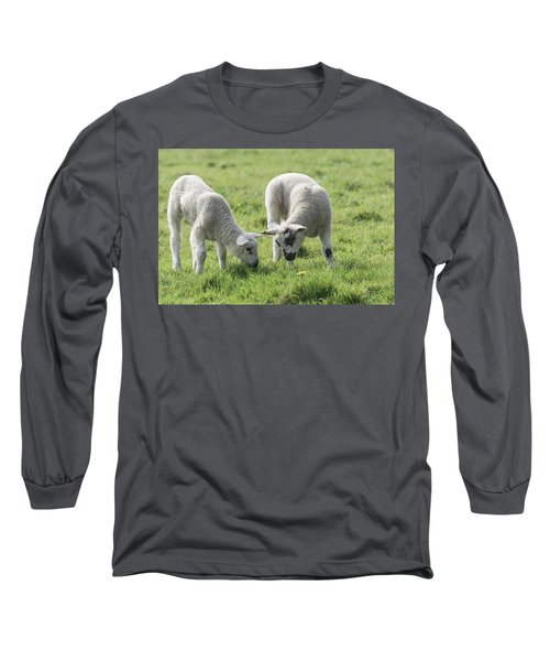 Long Sleeve T-Shirt featuring the photograph Spring Lambs by Scott Carruthers
