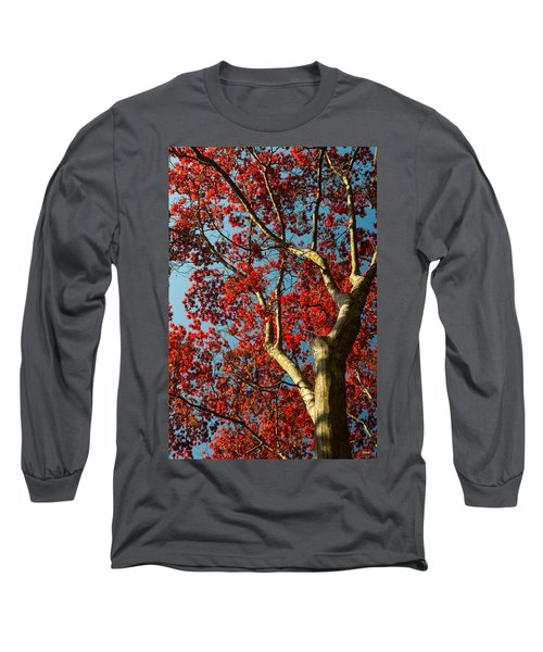 Long Sleeve T-Shirt featuring the photograph Spring Maple by Dana Sohr