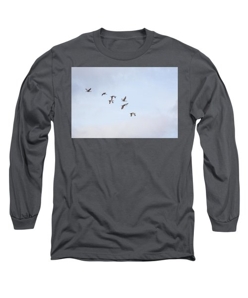 Spring Migration Long Sleeve T-Shirt