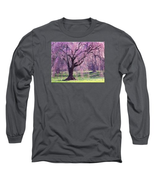 Spring Sensation Long Sleeve T-Shirt by Mikki Cucuzzo