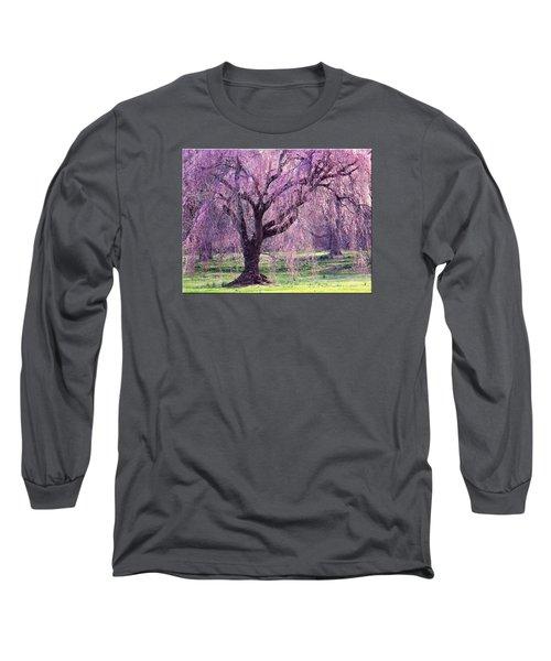 Spring Sensation Long Sleeve T-Shirt