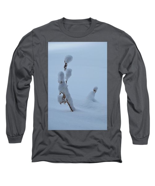 Spring Snow Long Sleeve T-Shirt