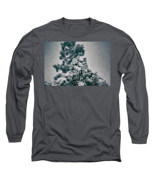 Spring Snowstorm On The Treetops Long Sleeve T-Shirt by Jason Coward