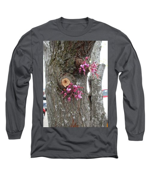 Long Sleeve T-Shirt featuring the photograph Spring Will Not Be Denied by Marie Neder