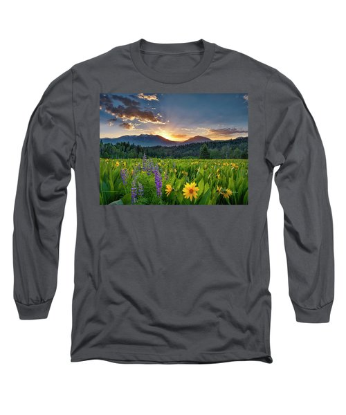 Spring's Delight Long Sleeve T-Shirt by Leland D Howard